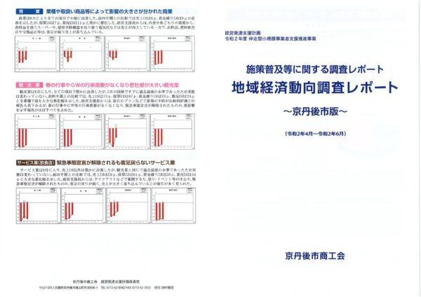 地域経済動向調査レポート 01
